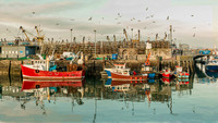 Brixham Fishing Boats